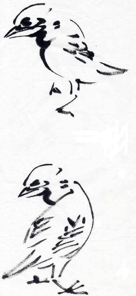 ♧산약초마을♧  참새그리기 - 강장원 - Daum 카페